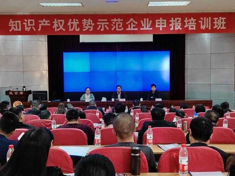 知识产权优势示范企业申报培训班在南昌顺利举办